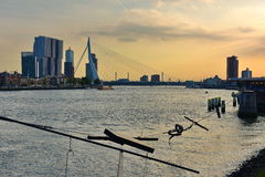 Erasmus Bridge and surrounding skyline during the evening Royalty Free Stock Photo
