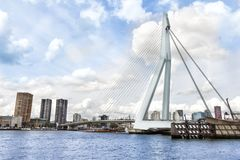 Erasmus-bro i Rotterdam royaltyfria foton