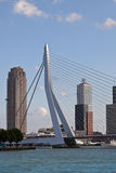 Erasmus brug, Rotterdam Royalty-vrije Stock Foto's