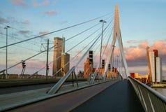 Erasmus brug in Rotterdam, Holland, Nederland Stock Afbeelding