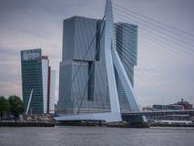 Erasmus brug Rotterdam, Nederland tegen donkere hemel Royalty-vrije Stock Foto