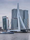 Erasmus brug Rotterdam, Nederland tegen donkere hemel Stock Foto's