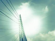 Erasmus Cable Stay Bridge Rotterdam arkivfoto