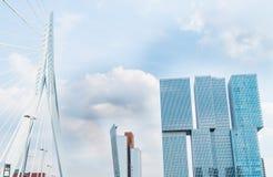 Erasmus Cable Stay Bridge Rotterdam royaltyfri foto
