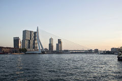 Erasmus most w Rotterdam Zdjęcie Stock