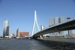 Erasmusbridge Роттердам Стоковые Фотографии RF