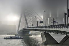 Erasmusbridge na mgłowym dniu obraz stock