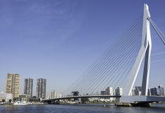 Erasmusbridge in the port of Rotterdam city in Holland Stock Photo