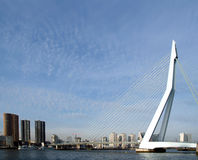 Erasmusbridge in Rotterdam Stock Photography