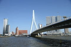Erasmusbridge rotterdam Royalty Free Stock Photos