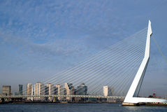 The Erasmusbrudge in Rotterdam s Royalty Free Stock Image