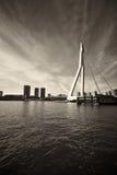 Erasmusbrug Στοκ φωτογραφία με δικαίωμα ελεύθερης χρήσης