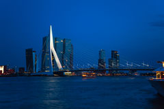 Erasmusbrug bridge view at night in Rotterdam, Stock Images