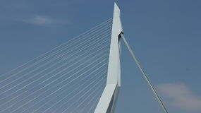 Erasmusbrug Close up Royalty Free Stock Image