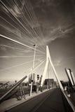 Erasmusbrug. Erasmusbridge in Rotterdam (The Netherlands Stock Images