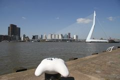 The Erasmusbrug. The famous Rotterdam landmark bridge, The Erasmusbrug, also called 'The Swan Stock Photos