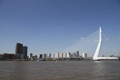 The Erasmusbrug Stock Images