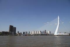 The Erasmusbrug. The famous Rotterdam landmark bridge, The Erasmusbrug, also called 'The Swan Stock Images