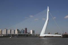 The Erasmusbrug. The famous Rotterdam landmark bridge, The Erasmusbrug, also called 'The Swan Royalty Free Stock Image
