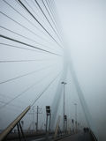 Erasmusbrug in the fog Stock Image