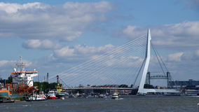 Erasmusbrug in Port of Rotterdam Stock Photos