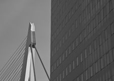 Erasmusbrug in Rotterdam. The Erasmusbrug in Rotterdam is a beauityfull piece of architecture. This is the top of the bridge behind a modern building Stock Photos