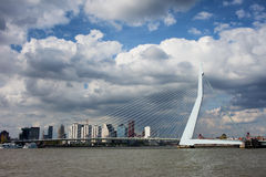 Erasmusbrug in Rotterdam. City skyline of Rotterdam, Erasmus Bridge (Dutch: Erasmusbrug) over Niewe Maas river in South Holland, the Netherlands Royalty Free Stock Photo