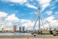 Erasmusbrug and Rotterdam cityscape Royalty Free Stock Images