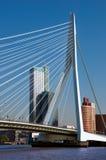 Erasmusbrug sopra il fiume di Rotte a Rotterdam Fotografia Stock Libera da Diritti