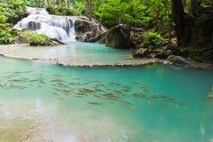Eravan Waterfall, Thailand Royalty Free Stock Photos