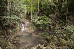 Erawan nedgångar - Thailand Royaltyfria Foton