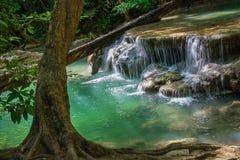 Erawan vattenfall i djup skog Arkivfoton
