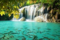 Erawan Waterfall, beautiful waterfall in spring forest Stock Photography