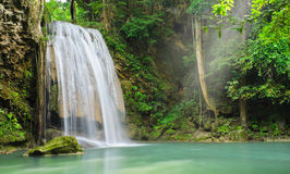 Tropical rainforest waterfall Royalty Free Stock Images