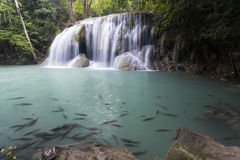 Erawan waterfall in Kanchanaburi Royalty Free Stock Photography