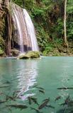 Erawan Waterfalls (Thailand) Royalty Free Stock Images