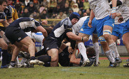 ERB Six Nations Rugby - Italy vs Scotland Royalty Free Stock Images