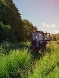 Erba alta di falciatura verde del trattore agricolo in un giorno di estate soleggiato Fotografie Stock Libere da Diritti