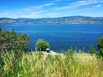 Erba alta sul parasole di trascuratezza della sommità sulla spiaggia del lago Fotografia Stock