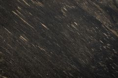 Erba asciutta bruciacchiata su un pendio nero Fotografia Stock