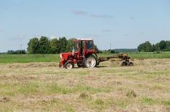 Erba asciutta del fieno di ted del trattore nel campo di agricoltura Fotografia Stock