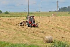 Erba asciutta dell'agricoltore Fotografie Stock Libere da Diritti