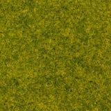 Erba astratta come il fondo di colore verde di progettazione di struttura Fotografia Stock