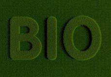 Erba BIO- Fotografia Stock
