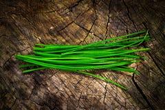 Erba cipollina (allium schoenoprasum) Fotografia Stock