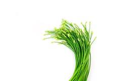 Erba cipollina o allium tuberosum di aglio isolato su bianco Immagini Stock Libere da Diritti