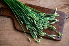 Erba cipollina o allium tuberosum di aglio sulla tavola di legno Immagini Stock