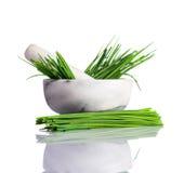 Erba cipollina verde in pestello e mortaio su bianco Immagini Stock Libere da Diritti