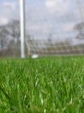 Erba con la rete di calcio fotografia stock libera da diritti