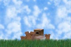 Erba con le caselle Fotografia Stock Libera da Diritti